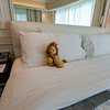 Lion checking out our room at Le Méridien Mina Seyahi Beach Resort & Marina.