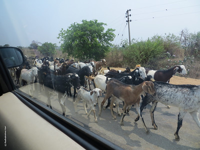 Heading back from Srisailam