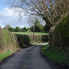 28  G Narrow Road and Hedges