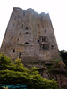looking up Blarney Castle