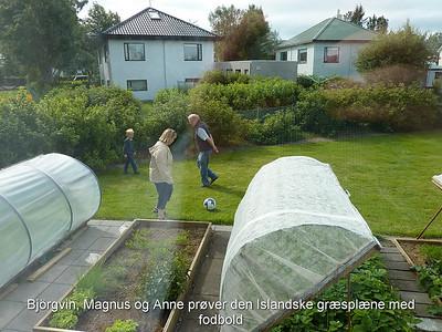 Björgvin, Magnus og Anne prøver den Islandske græsplæne med fodbold
