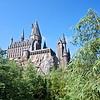 The Hogwart Castle