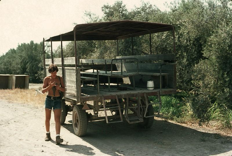 Kibbutz limosine
