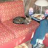 Hotel Corolle cat.
