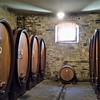 The wine barrels are oval instead of round so that they can fit many of these into a tight space