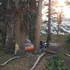 Camp #16, Gladys Lake