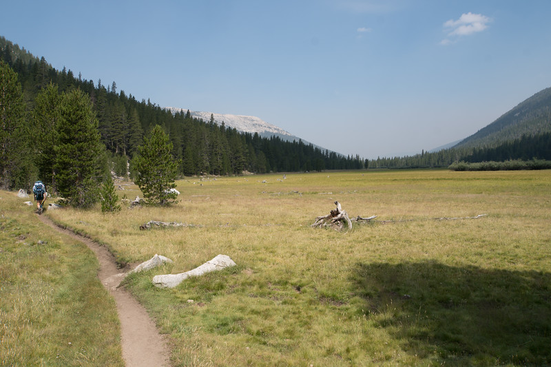 Upper Tuolumne Meadows was clear in the morning.