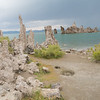 There's an osprey nest out on the tufa in the lake.