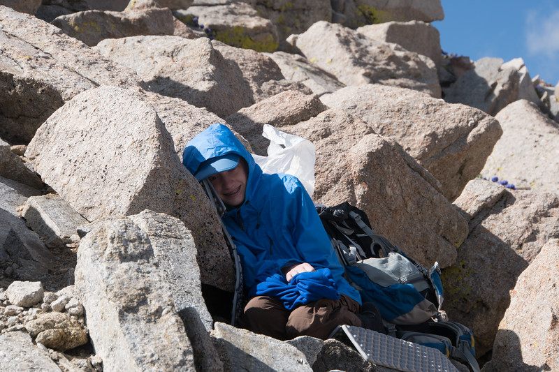 Keira made it up to Trail Crest at least an hour before everyone else, so she curled up in the rocks for a nap.