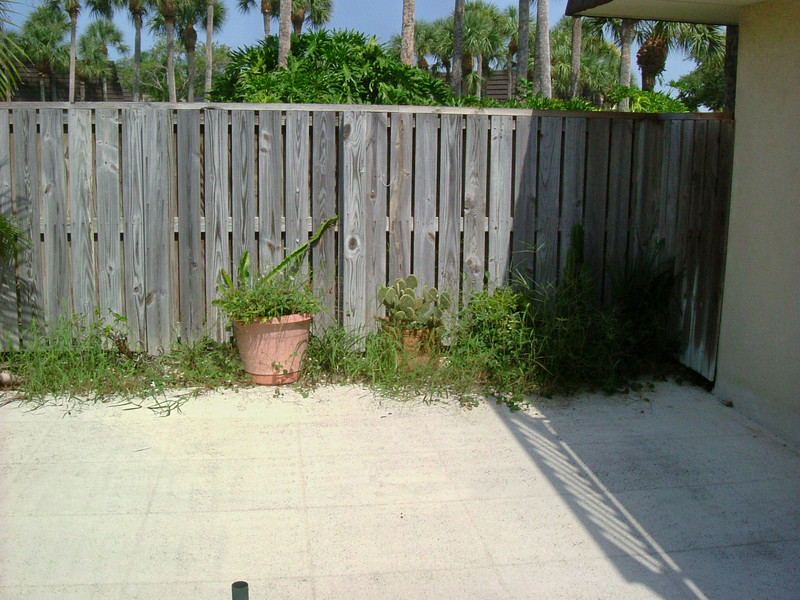 First look at yard