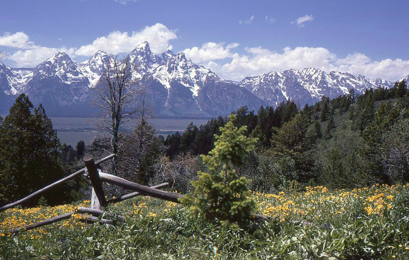 Tetons seen from the east side of Jackson Hole.