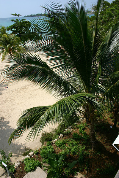The resort integrates seamlessly with nature.
