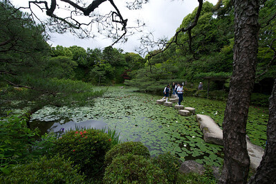 Heian Jingu Shrine, vijveroverstekplaats, Kyoto