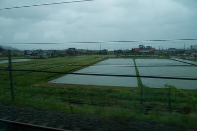 hier en daar rijstvelden.