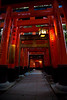 Torii at Fushimi Inari Taisha 伏見稲荷大社
