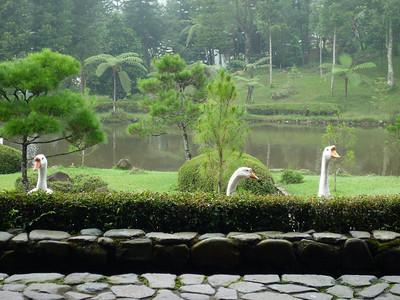 Javana Spa Nov 2008