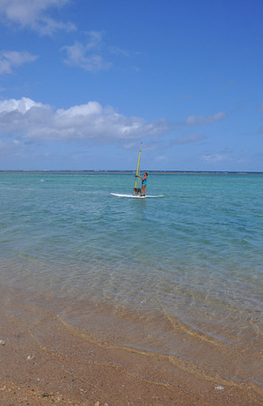 gal windsurfing with her dog at Anini Beach