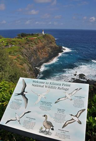 a seabird sanctuary