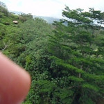My attempt to video the Zipline experience (Woops...didn't realize my finger was there - it's not that easy to zipline and steer while trying to hold the camera and take video!)