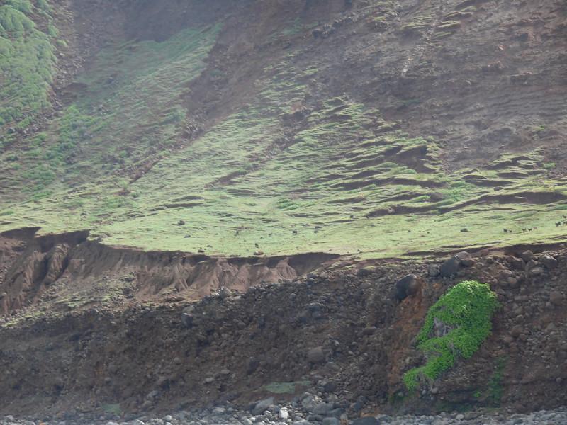 A close up look at the Kauai coast from the Zodiac Raft heading up to the Na Pali coast