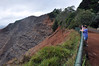 Yet another stop (unresistable) along the Waimea Canyon road.