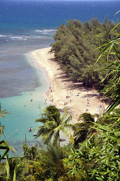 Nice veiw of Kee Beach from the Kalalau Trail. Right now, I'd rather be splashing around in the water.