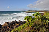 The coast near Kapaa, on the east side of the island. This is Aug. 21, 2009, the 50th anniversary of Hawaii's statehood.