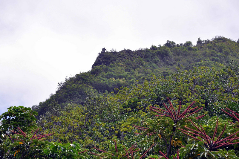 "The ""menehune"" (standing rock, near the cliff) on Makana."