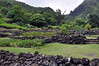 "Limahuli Garden and Preserve in Ha Ena is part of the National Tropical Botanical Garden system.  <a href=""http://www.ntbg.org"">http://www.ntbg.org</a>"