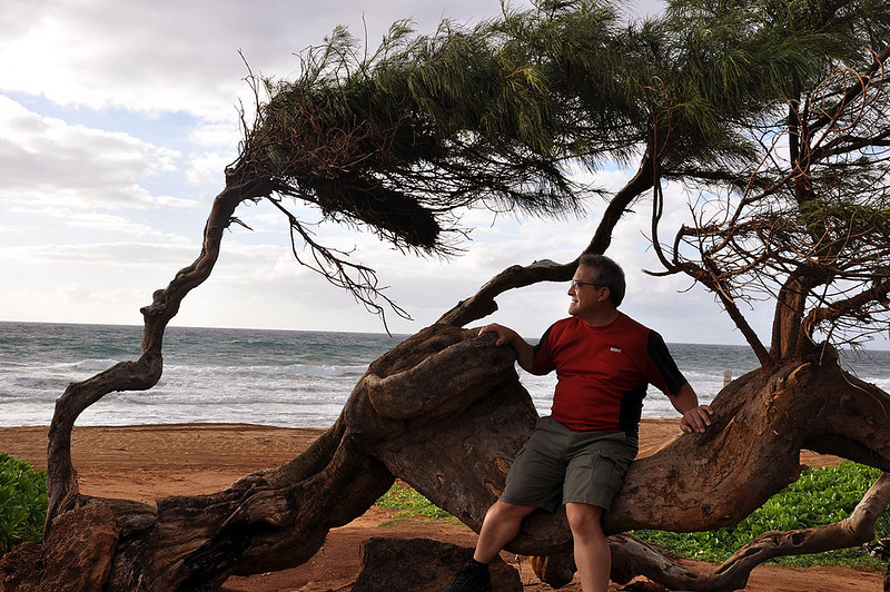 Rick likes this oddly shaped tree, near Kapaa, Kauai (Hawaii).