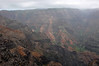 Waimea Canyon is the largest canyon in the Pacific.
