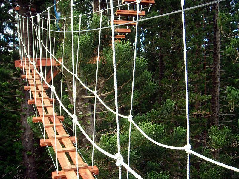 Rope bridge portion of the eco adventure. The next bridge (higher) has less places to step.