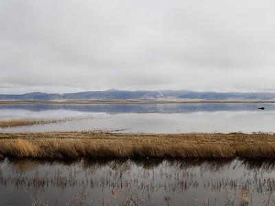 Klamath Lake Mar8-10  0740