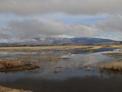 Klamath Lake Mar8-10  0742