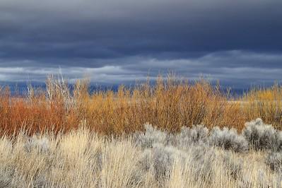 Klamath Lake Mar8-10  0650