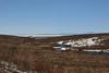 More tundra