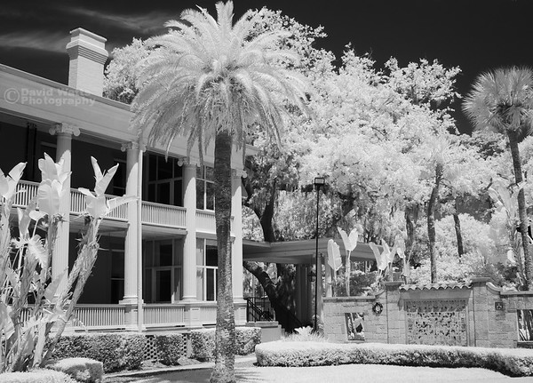 Behind Markland House, Flagler College, Infrared