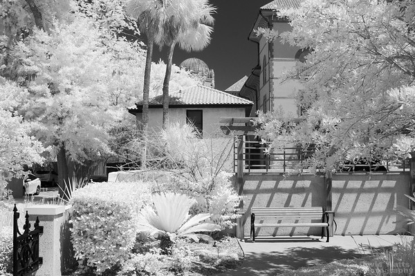 Crist - Ellert Art Museum Back Courtyard, Infrared