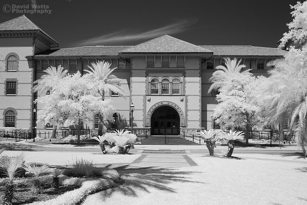 Flagler College Proctor Library, Infrared