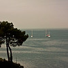 La Trinité sur mer - Morbihan - France