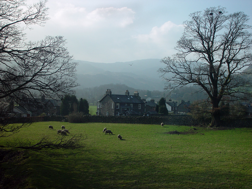 View from our hotel, looking towards Grasmere Village.