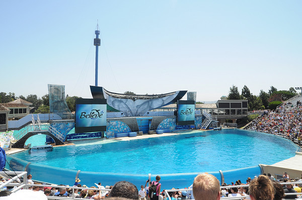 07-16-2010 Seaworld