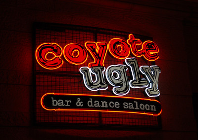 Coyote Ugly bar inside New York New York.