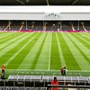 Fulham Football Club pitch...ready for the match