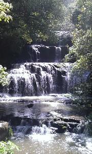 Purakaunui Falls, Catlins Forest Park