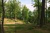 Bill's Cabin view