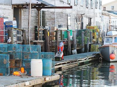 Portland Docks