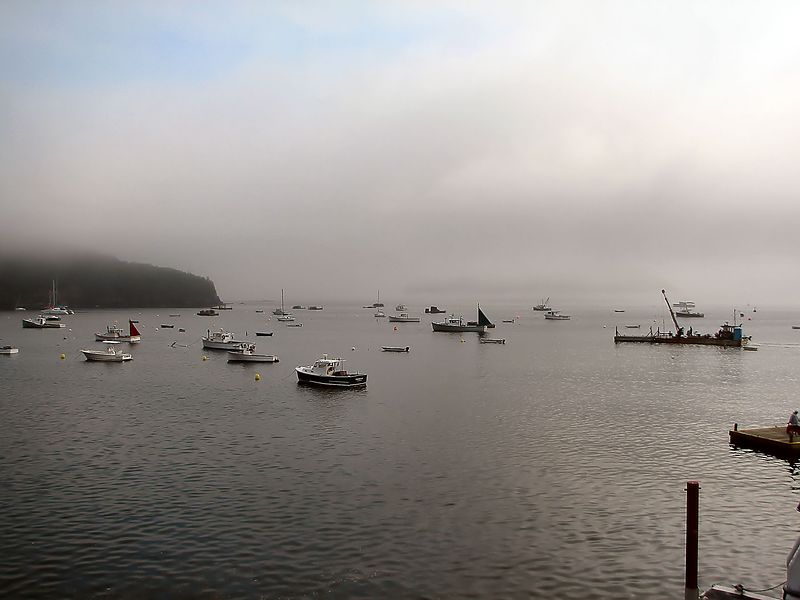 Foggy Morning Bar Harbor