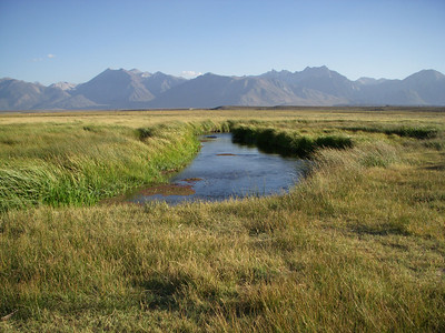 The Owens River