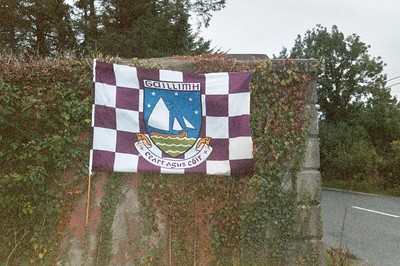 Galway flag